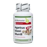 AGARICUS BLAZEI EXTRACT 30% POLYSACCHARIDES