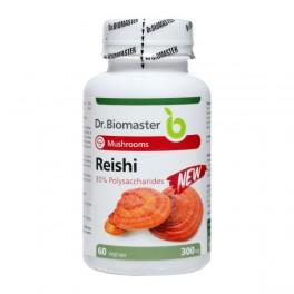 REISHI EXTRACT 30% POLYSACCHARIDES