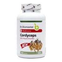 CORDYCEPS EXTRACT 30% POLYSACCHARIDES - 240 caps.